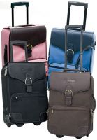 Rolling Luggage w/ Detachable Cosmetic Case - Destination