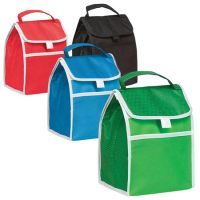 Insulated Lunch Bag - Folds Flat - 90G Non Woven Material