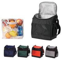 Soft Sided Cooler w/ Removable Clear Liner - The Hatchback