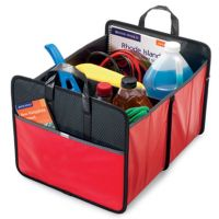 Trunk Organizer w/ Dividers - Collapses - Life in Motion Primary