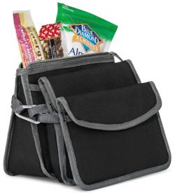 Insulated Lunch Pouch - Three Piece Set - Igloo
